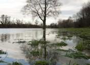 Hochwasser-5